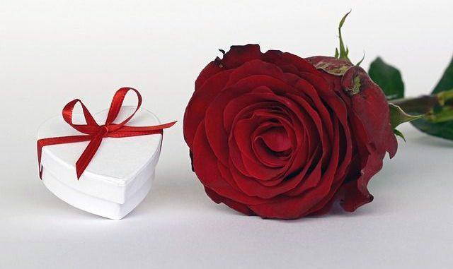regala flores a domicilio