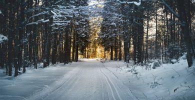 superar la depresion invernal