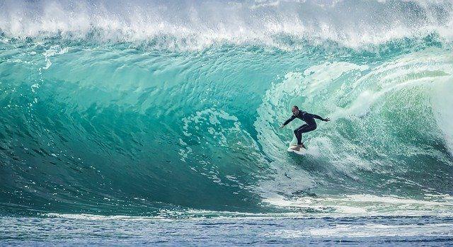 Surfea la ola con conexoo y raiola