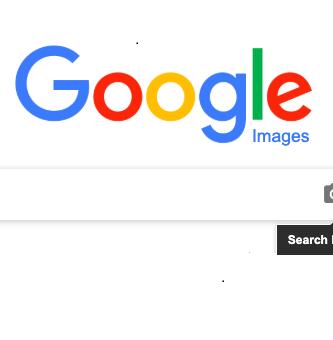 buscador de imagenes