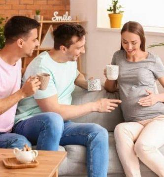 maternidad suborgada en españa