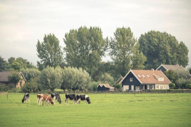 quien es mas probable que viva en una granja