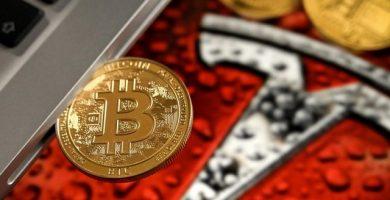 elon musk - bitcoin