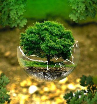 servicios consultoria medioambiental